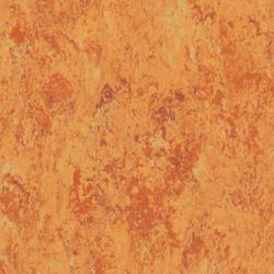 Linoleum | Harmonium xf - Veneto |                                                          Veneto AMBER 636
