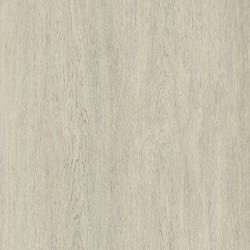 Heterogeneous Vinyl | TX STANDING |                                                          Oak Tree SNOW