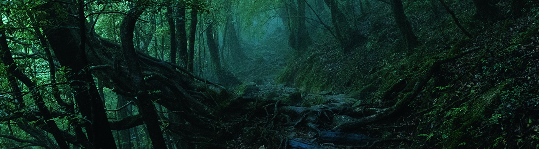 Miljø og innvovation