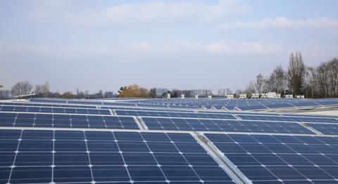 Solar panels installed in our plant in Waalwijk (Netherlands)