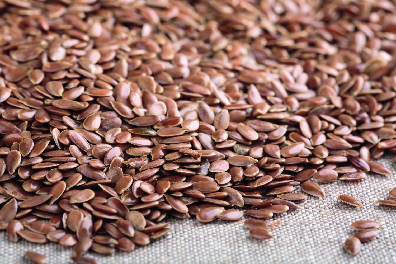 Semillas de lino utilizadas en la producción de nuestros suelos de linóleo