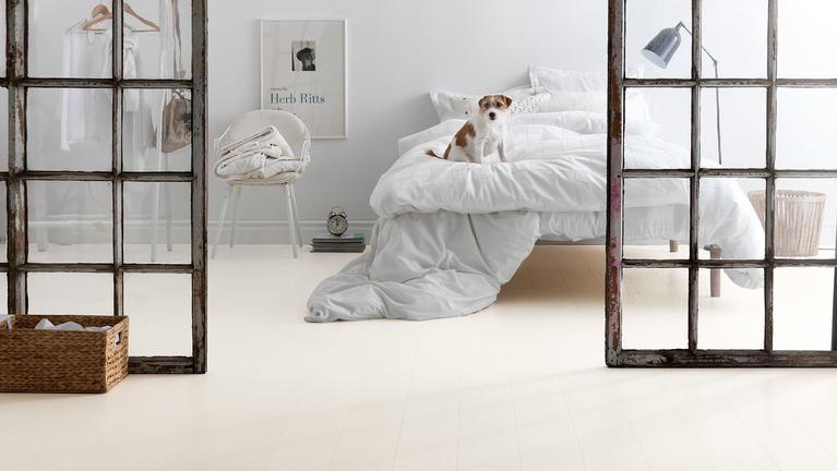 Vilka golv passar när man har hund?